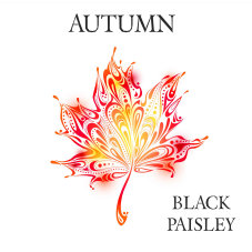 blackpaisleynew_april_www_1001013.jpg
